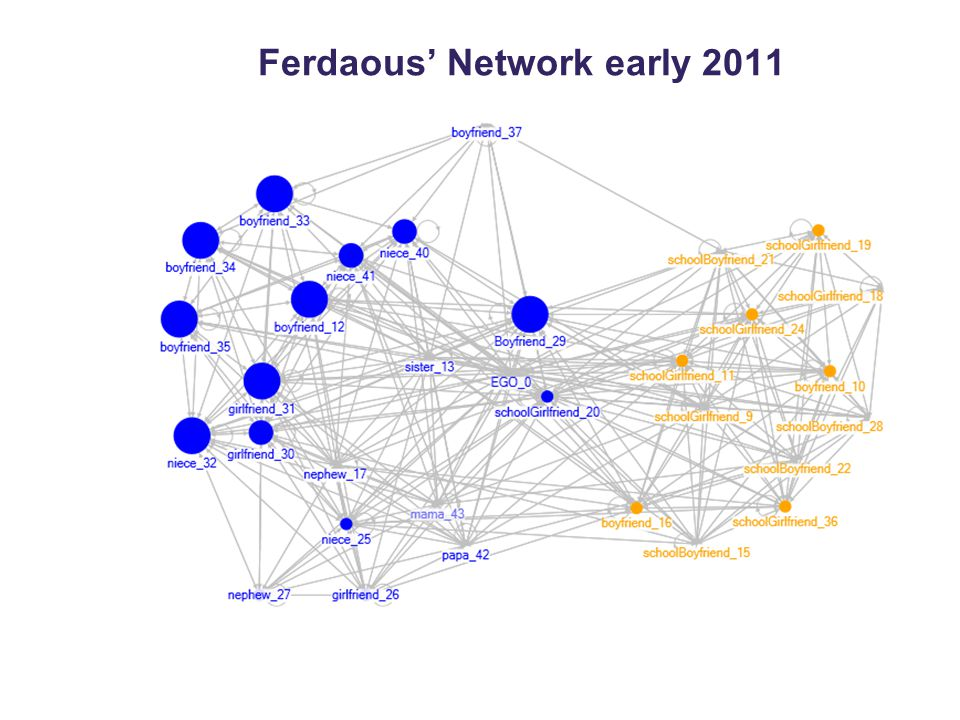 Ferdaous' Network early 2011