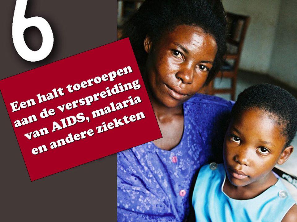 Een halt toeroepen aan de verspreiding van AIDS, malaria en andere ziekten