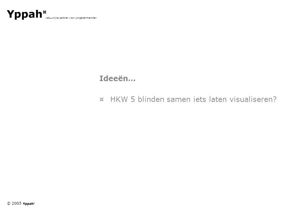 © 2005 natuurlijke partner voor jongerenmarkten Ideeën… ¤HKW 5 blinden samen iets laten visualiseren
