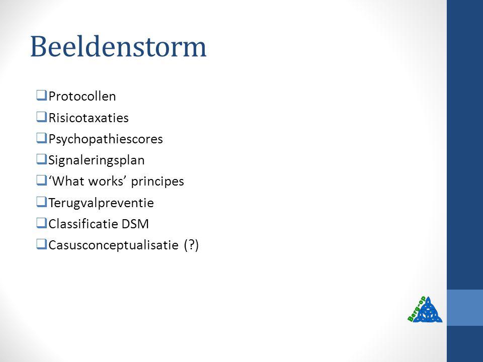 Beeldenstorm  Protocollen  Risicotaxaties  Psychopathiescores  Signaleringsplan  'What works' principes  Terugvalpreventie  Classificatie DSM 