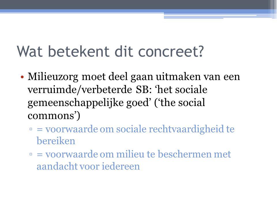 Wat betekent dit concreet? Milieuzorg moet deel gaan uitmaken van een verruimde/verbeterde SB: 'het sociale gemeenschappelijke goed' ('the social comm
