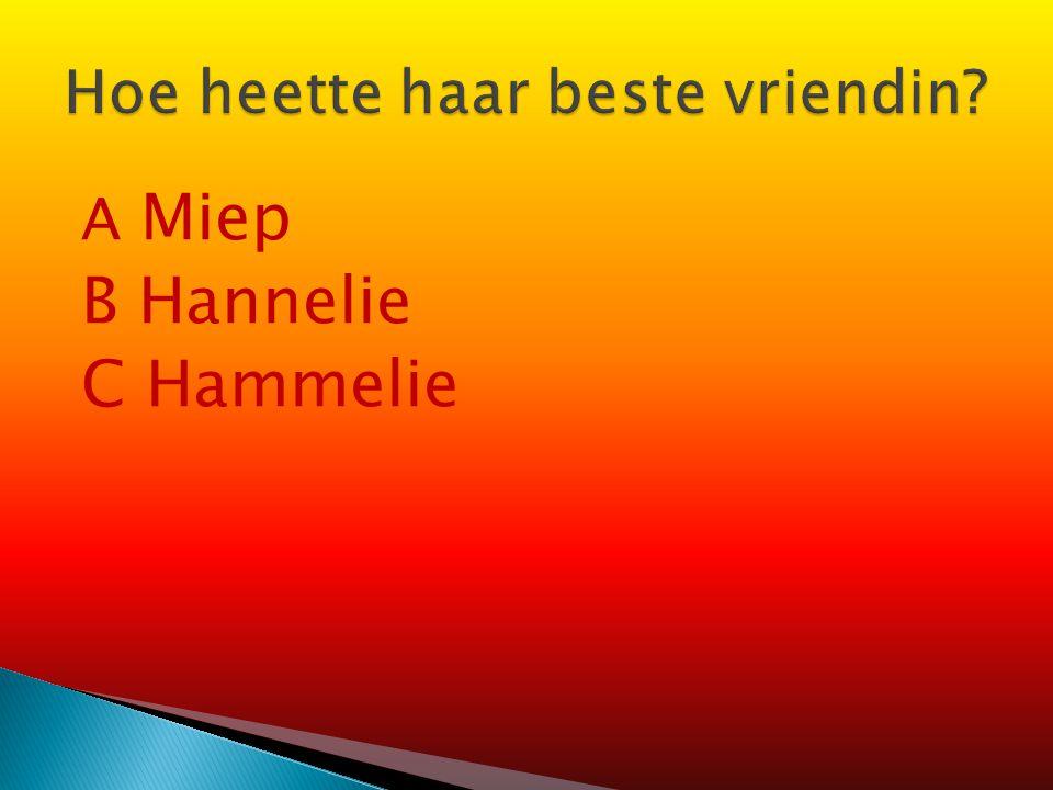 A Miep Gies C Victor Kugler Victor Kugler Johannes Kleiman Johannes Kleiman Willem van Maaren B Victor Kugler Willem van Maaren Miep Gies