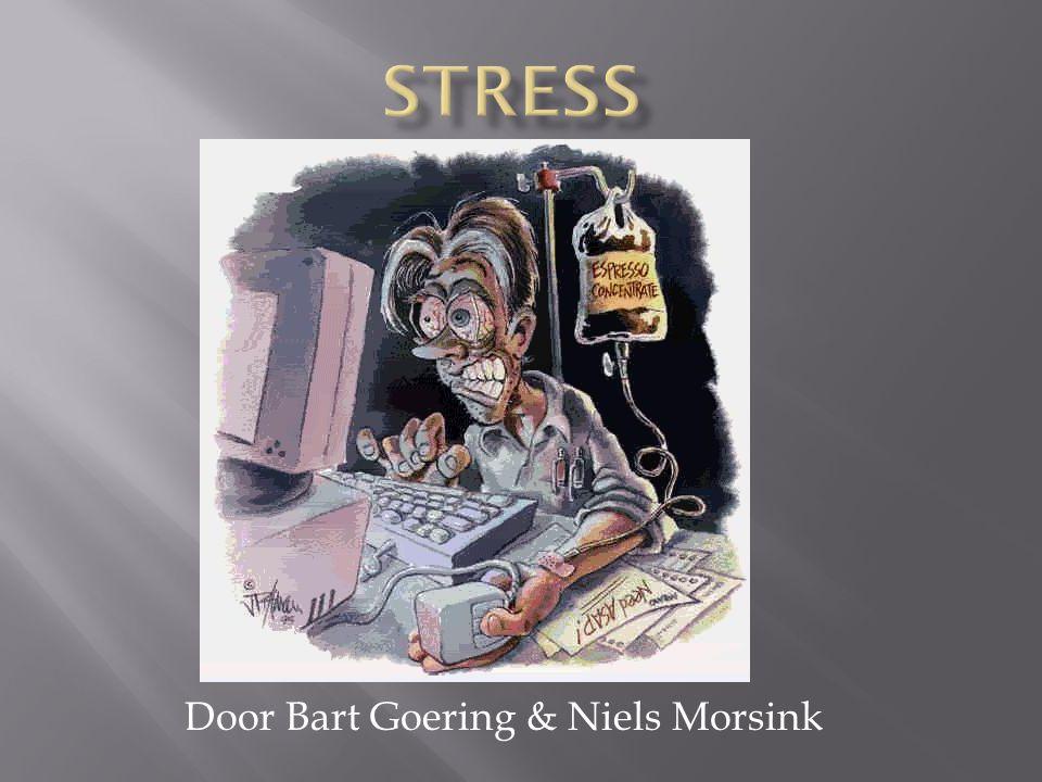 Door Bart Goering & Niels Morsink
