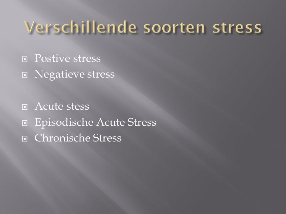  Postive stress  Negatieve stress  Acute stess  Episodische Acute Stress  Chronische Stress
