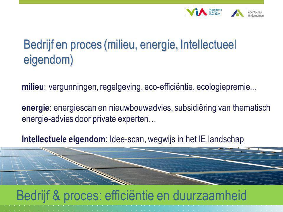 Bedrijf en proces (milieu, energie, Intellectueel eigendom) milieu : vergunningen, regelgeving, eco-efficiëntie, ecologiepremie... energie : energiesc