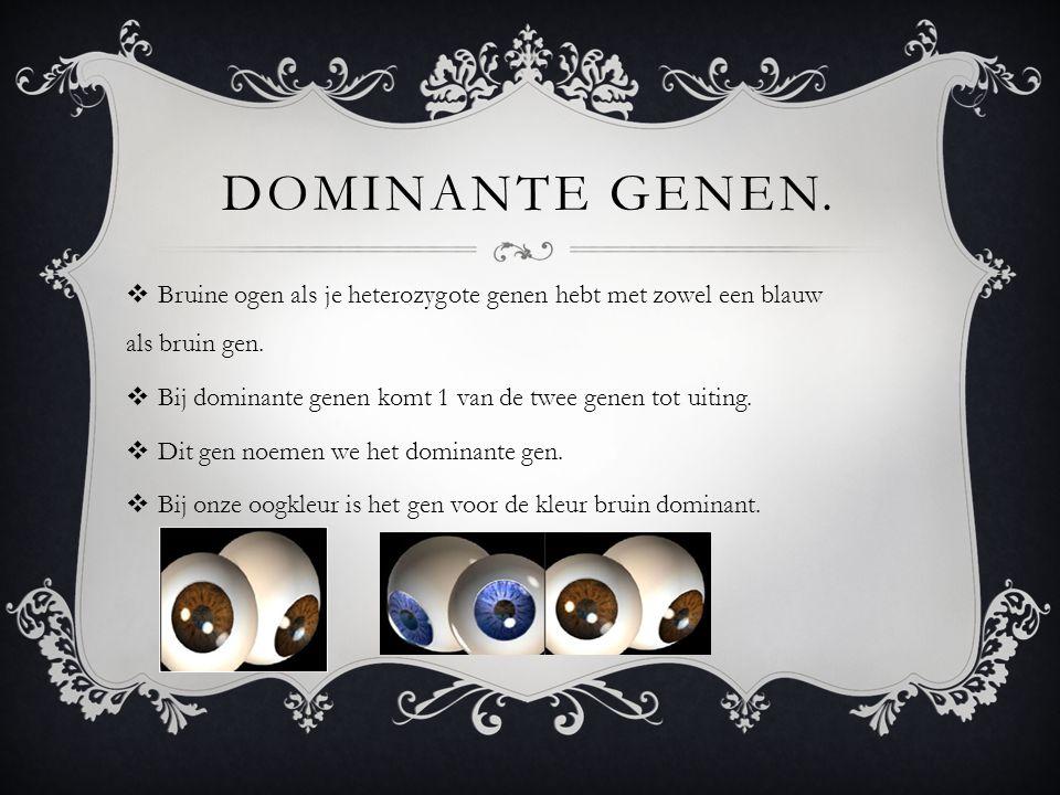 DOMINANTE GENEN.  Bruine ogen als je heterozygote genen hebt met zowel een blauw als bruin gen.  Bij dominante genen komt 1 van de twee genen tot ui