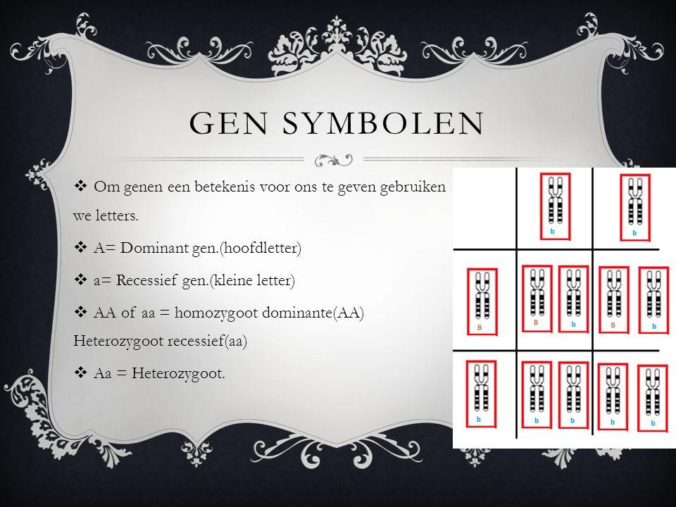 GEN SYMBOLEN  Om genen een betekenis voor ons te geven gebruiken we letters.  A= Dominant gen.(hoofdletter)  a= Recessief gen.(kleine letter)  AA