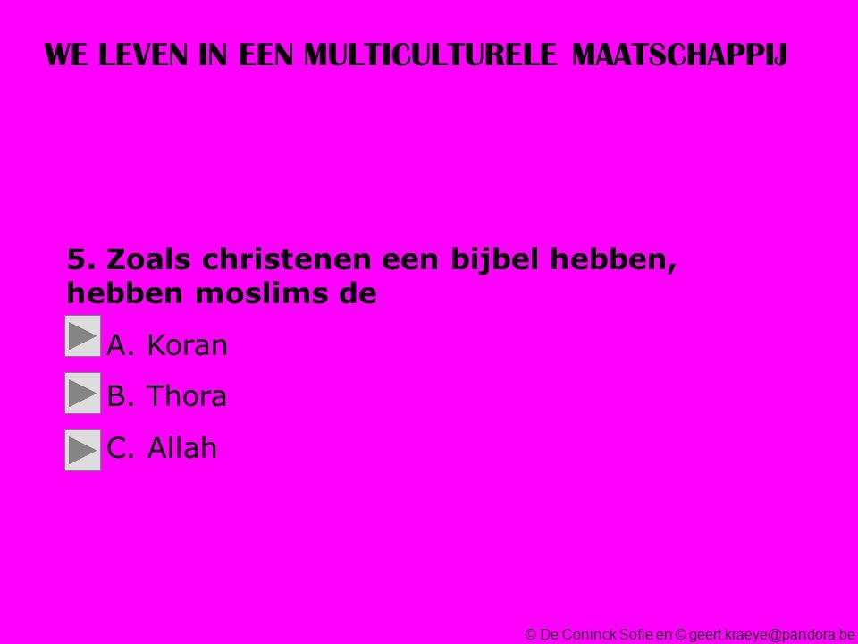 © De Coninck Sofie en © geert.kraeye@pandora.be WE LEVEN IN EEN MULTICULTURELE MAATSCHAPPIJ 5.