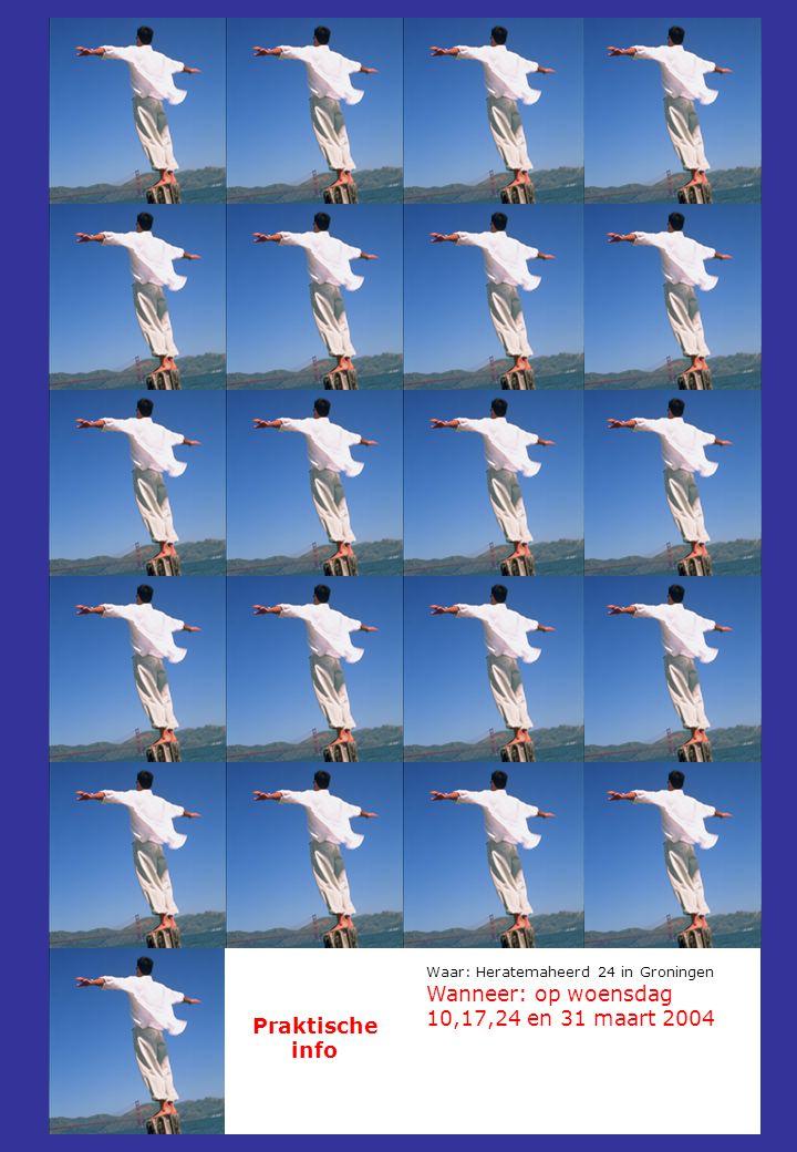 Praktische info Waar: Heratemaheerd 24 in Groningen Wanneer: op woensdag 10,17,24 en 31 maart 2004