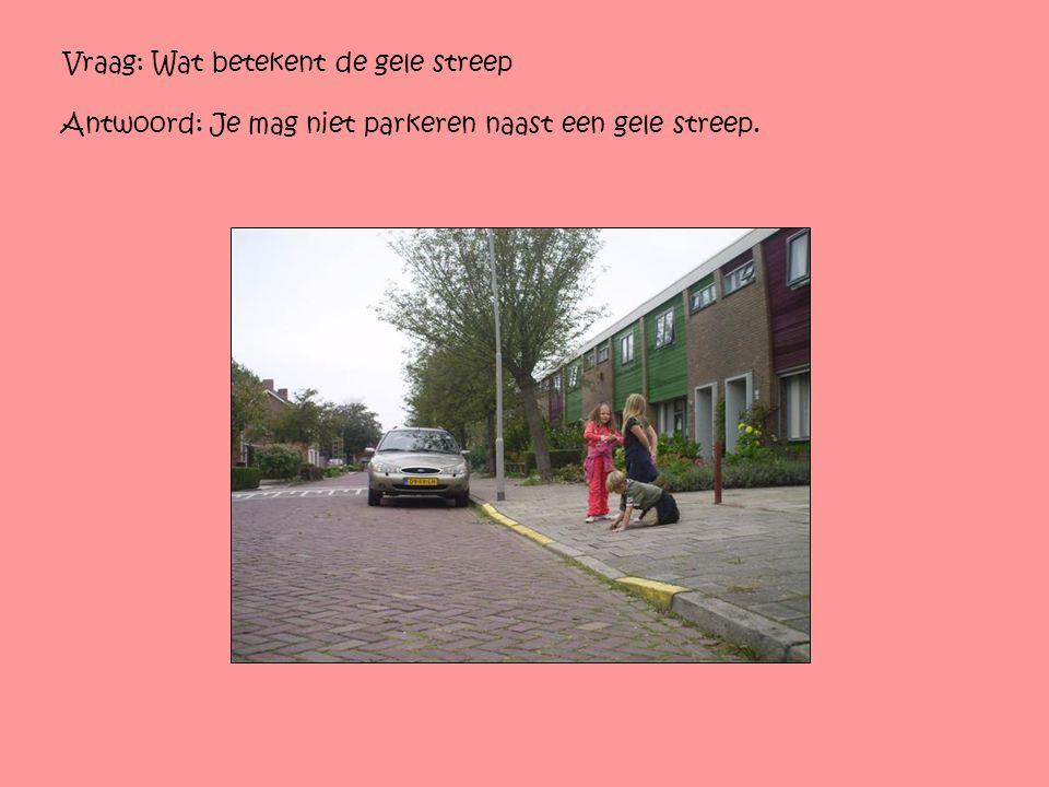 Vraag: Wat betekent de gele streep Antwoord: Je mag niet parkeren naast een gele streep.