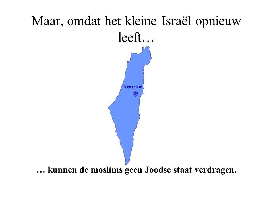  Jeruzalem En dit, ondanks het feit dat… … moslims ten oosten van Israël Jeruzalem de rug hebben toegekeerd.