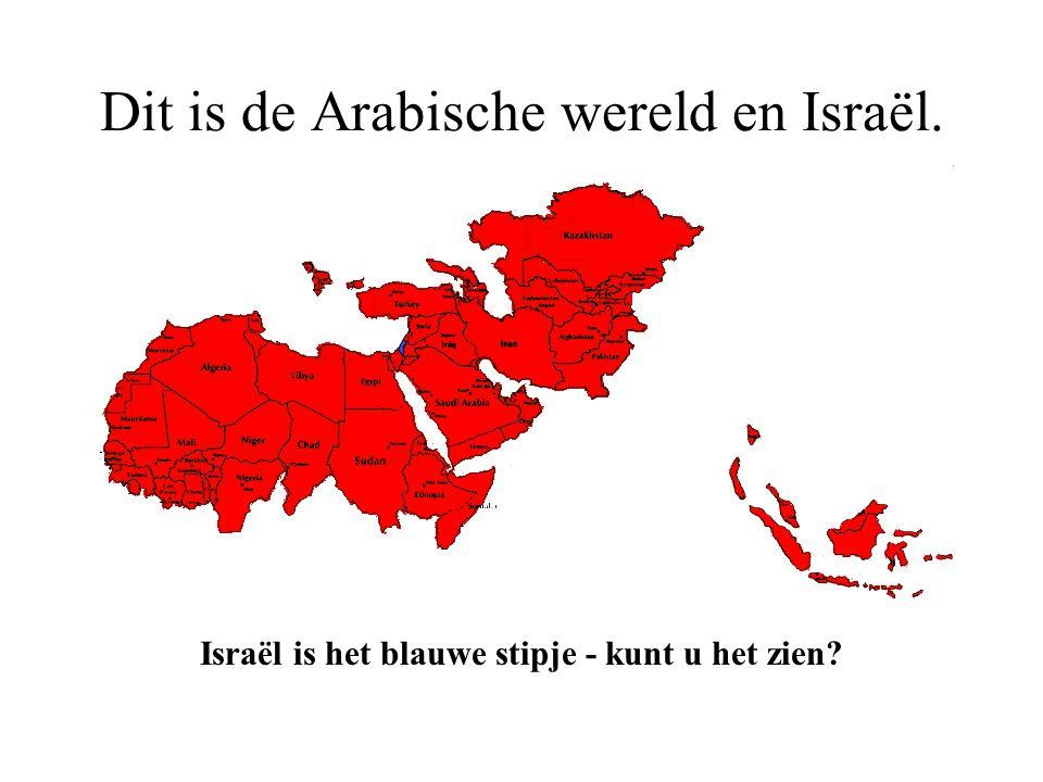Dit is de Arabische wereld. Dit zijn alle landen in de wereld die worden geregeerd door moslims.