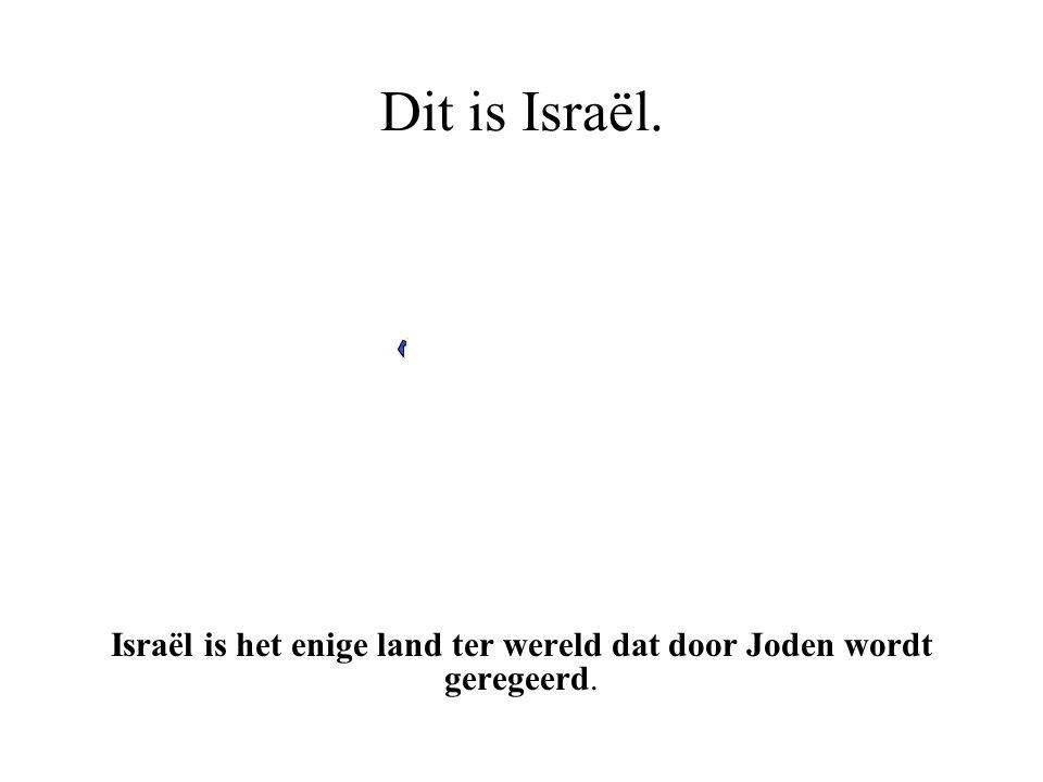 Dit is de Arabische wereld en Israël. Israël is het blauwe stipje - kunt u het zien?