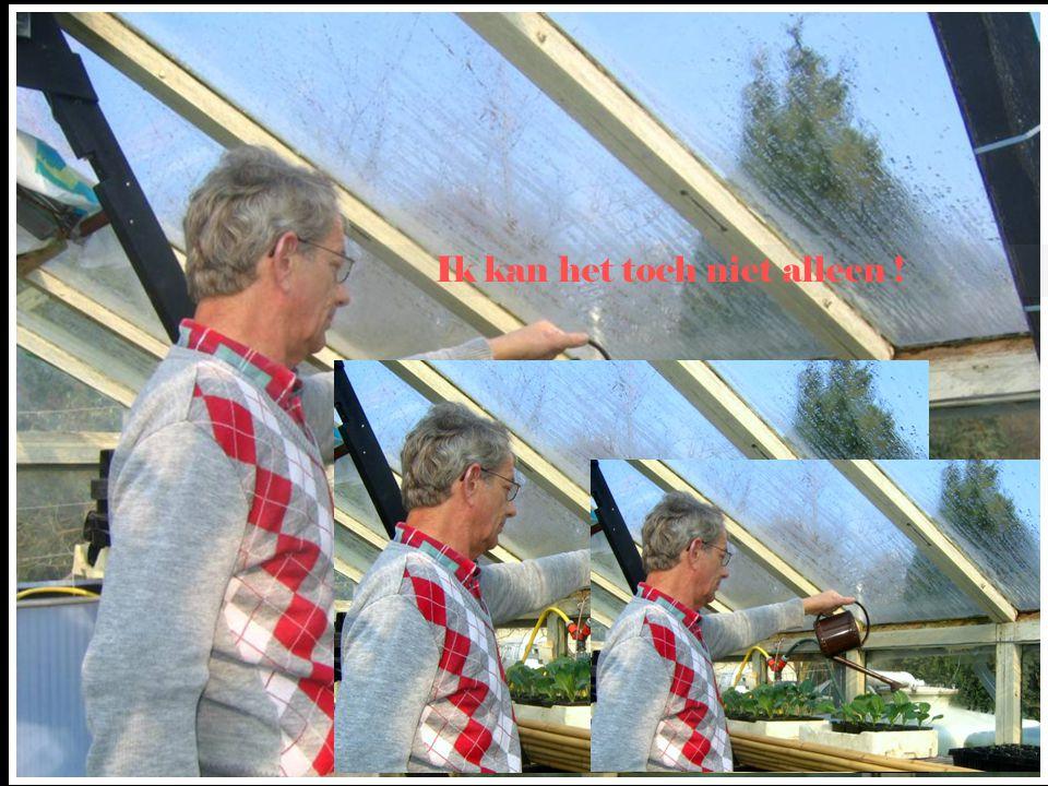 Je hebt van die mensen, die er alles voor over hebben, om op dak te zitten Rinus, kom van dat dak af, ik waarschuw je niet meer !
