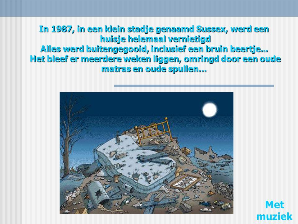 In 1987, in een klein stadje genaamd Sussex, werd een huisje helemaal vernietigd Alles werd buitengegooid, inclusief een bruin beertje...