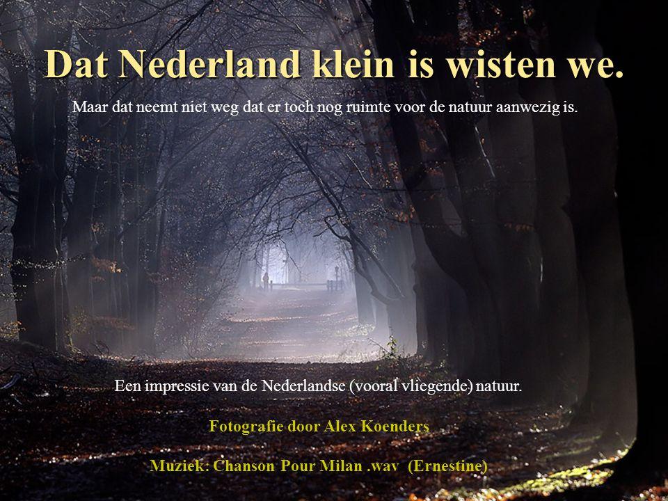 Dat Nederland klein is wisten we.