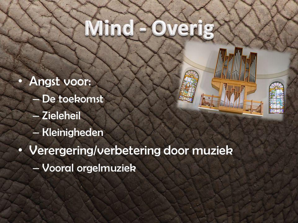 Angst voor: – De toekomst – Zieleheil – Kleinigheden Verergering/verbetering door muziek – Vooral orgelmuziek
