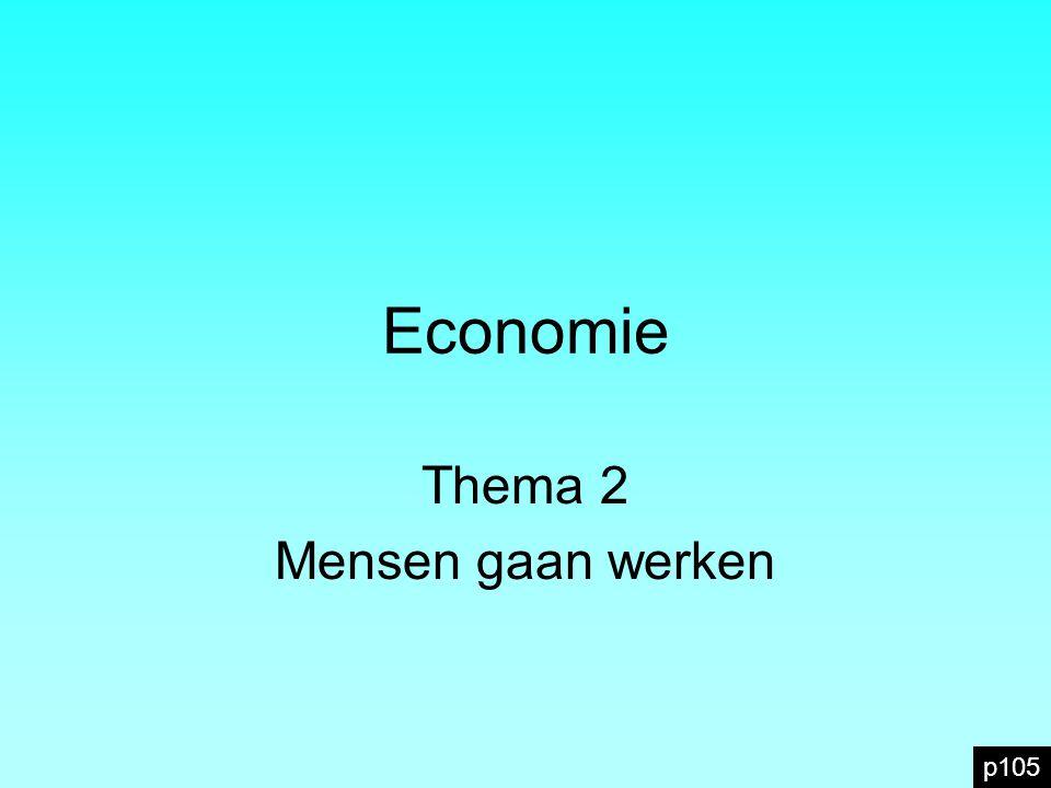 Economie Thema 2 Mensen gaan werken p105