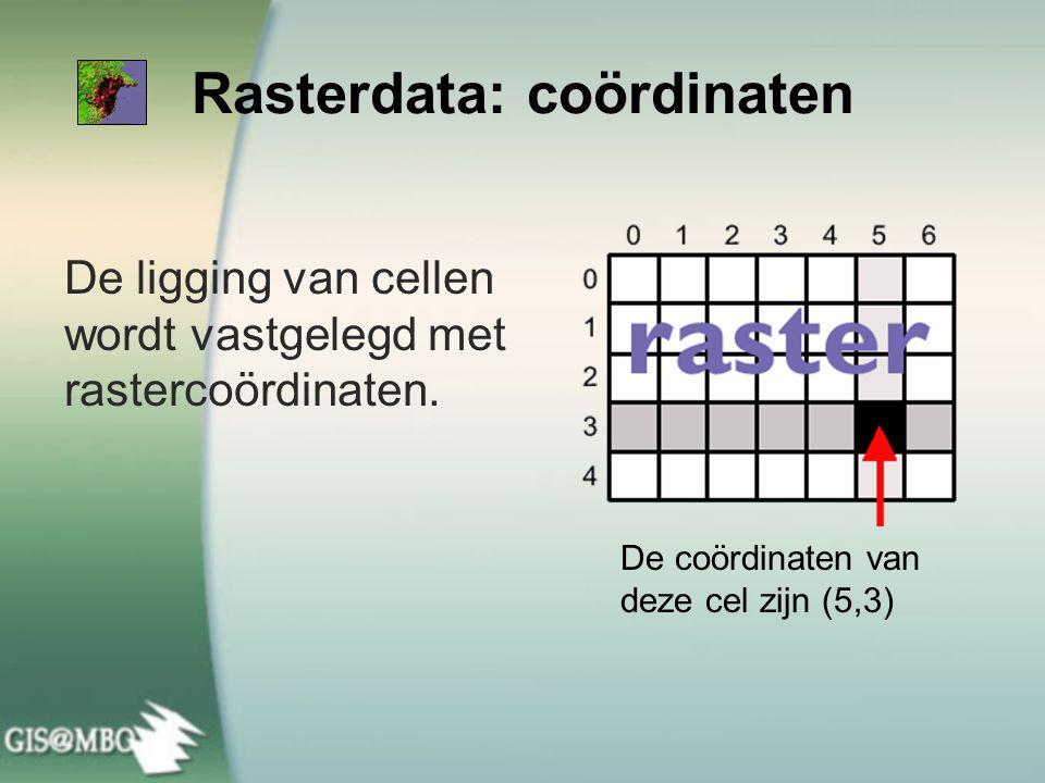 De ligging van cellen wordt vastgelegd met rastercoördinaten. Rasterdata: coördinaten De coördinaten van deze cel zijn (5,3)