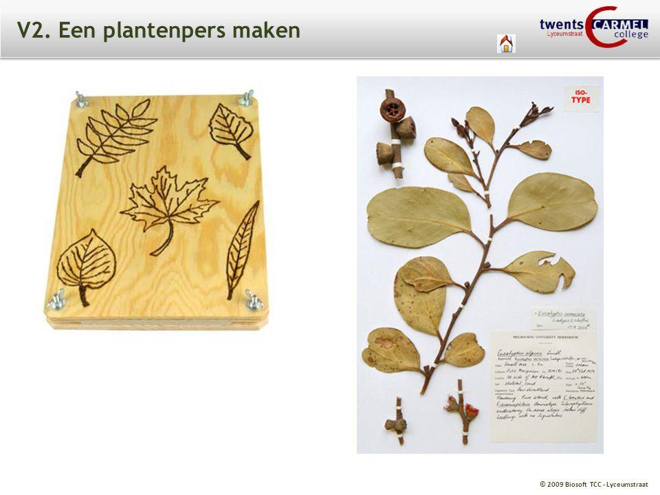 © 2009 Biosoft TCC - Lyceumstraat V2. Een plantenpers maken