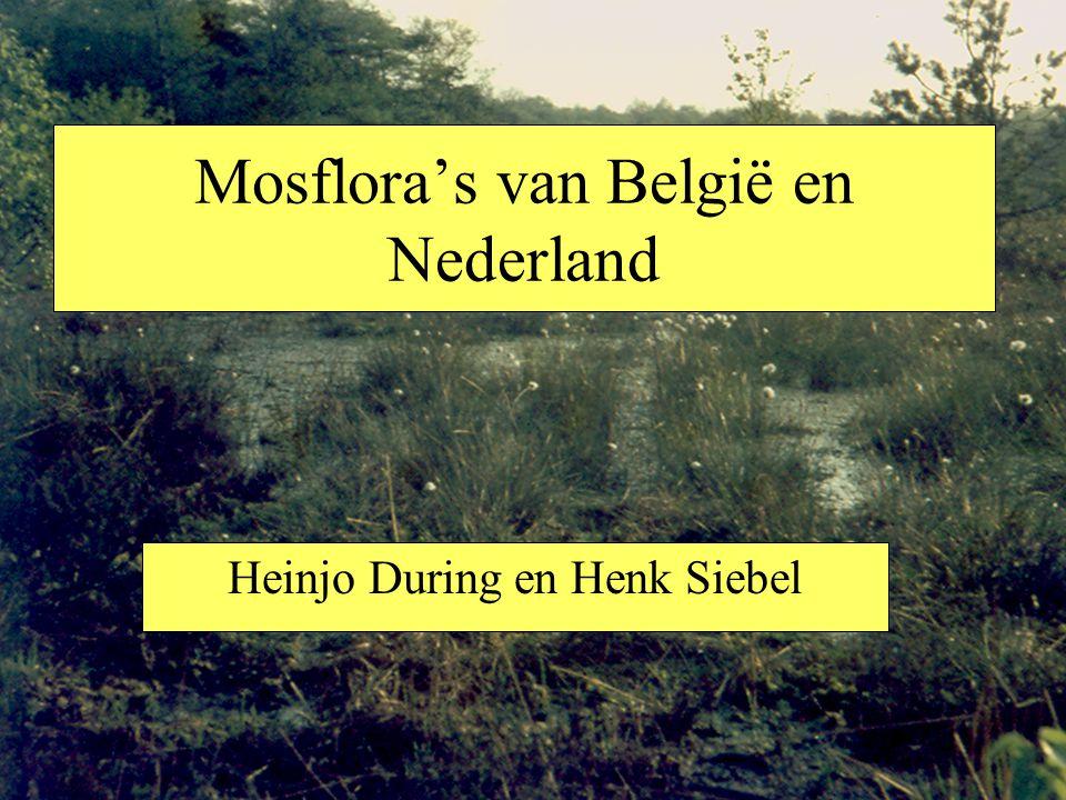 Mosflora's van België en Nederland Heinjo During en Henk Siebel