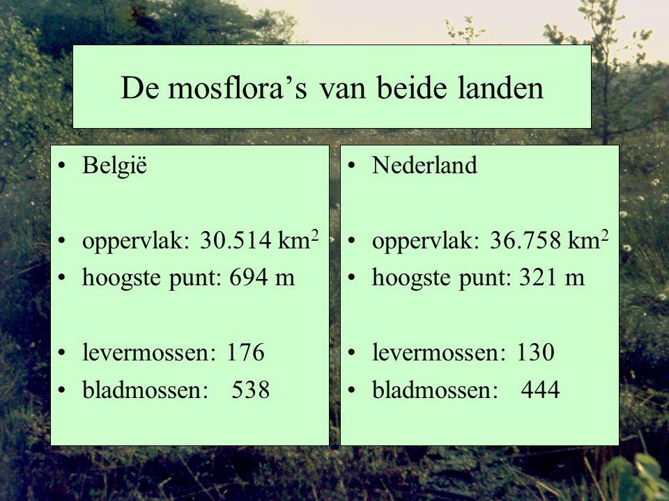 De mosflora's van beide landen België oppervlak: 30.514 km 2 hoogste punt: 694 m levermossen: 176 bladmossen: 538 Nederland oppervlak: 36.758 km 2 hoogste punt: 321 m levermossen: 130 bladmossen: 444