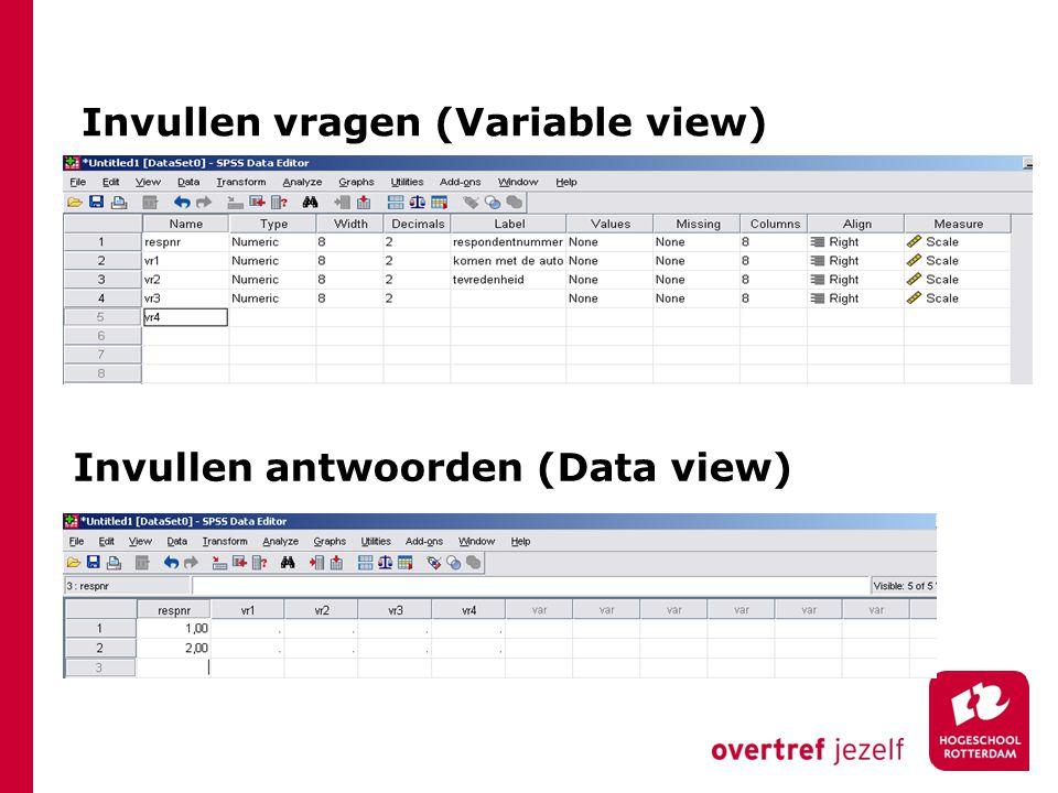 Invullen vragen (Variable view) Invullen antwoorden (Data view)