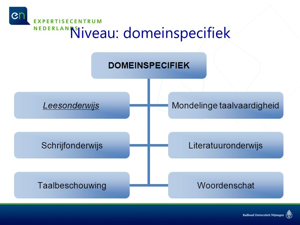 Niveau: domeinspecifiek DOMEINSPECIFIEK Leesonderwijs Mondelinge taalvaardigheid SchrijfonderwijsLiteratuuronderwijs TaalbeschouwingWoordenschat