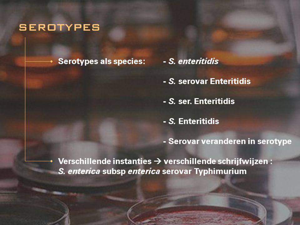Serotypes als species: - S. enteritidis - S. serovar Enteritidis - S. ser. Enteritidis - S. Enteritidis - Serovar veranderen in serotype Verschillende