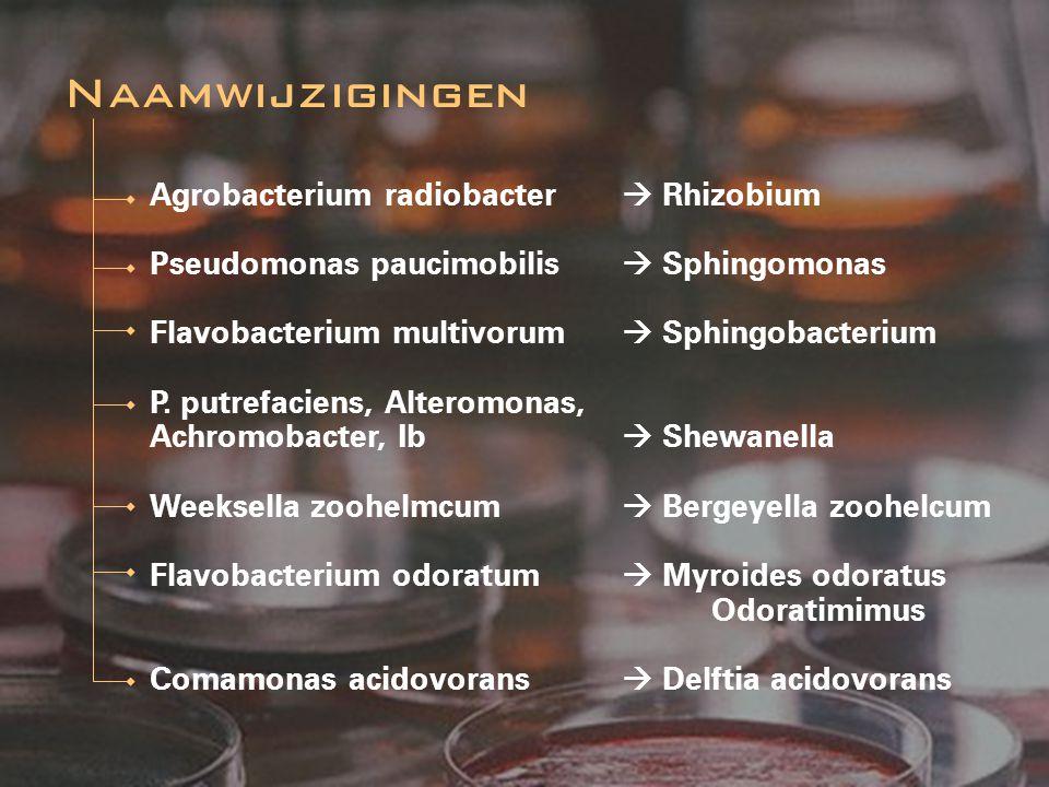 Agrobacterium radiobacter  Rhizobium Pseudomonas paucimobilis  Sphingomonas Flavobacterium multivorum  Sphingobacterium P. putrefaciens, Alteromona