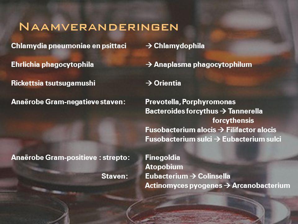 Chlamydia pneumoniae en psittaci  Chlamydophila Ehrlichia phagocytophila  Anaplasma phagocytophilum Rickettsia tsutsugamushi  Orientia Anaërobe Gra