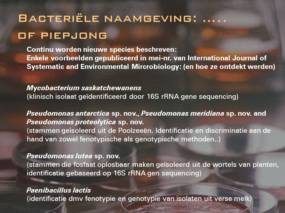 Bacteriële naamgeving: ….. of piepjong Continu worden nieuwe species beschreven: Enkele voorbeelden gepubliceerd in mei-nr. van International Journal