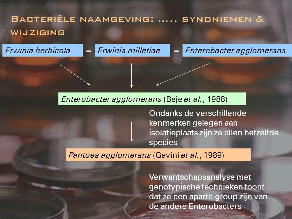 Bacteriële naamgeving: …..evolutie binnen een genus Klebsiella K.