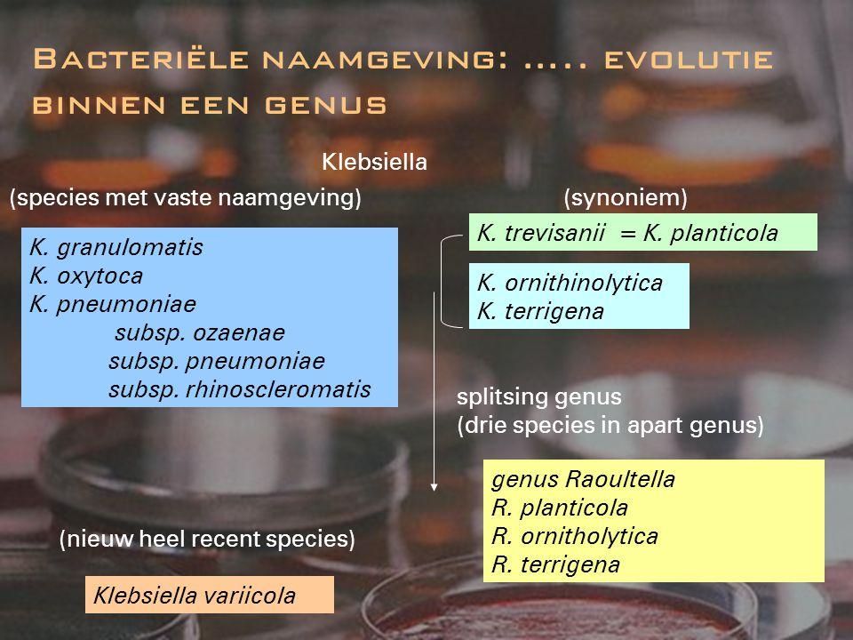 Bacteriële naamgeving: ….. evolutie binnen een genus Klebsiella K. granulomatis K. oxytoca K. pneumoniae subsp. ozaenae subsp. pneumoniae subsp. rhino