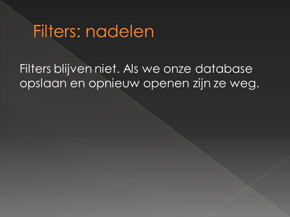 Filters blijven niet. Als we onze database opslaan en opnieuw openen zijn ze weg.