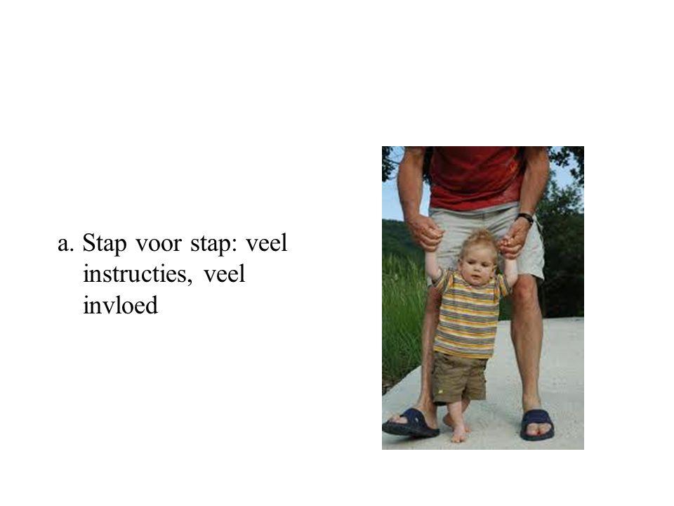 a. Stap voor stap: veel instructies, veel invloed