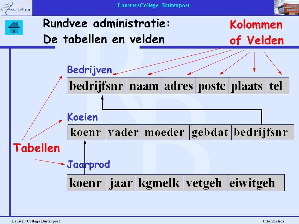 LauwersCollege Buitenpost LauwersCollege Buitenpost Informatica Bedrijven Rundvee administratie: De tabellen en velden Koeien Jaarprod Tabellen Kolomm