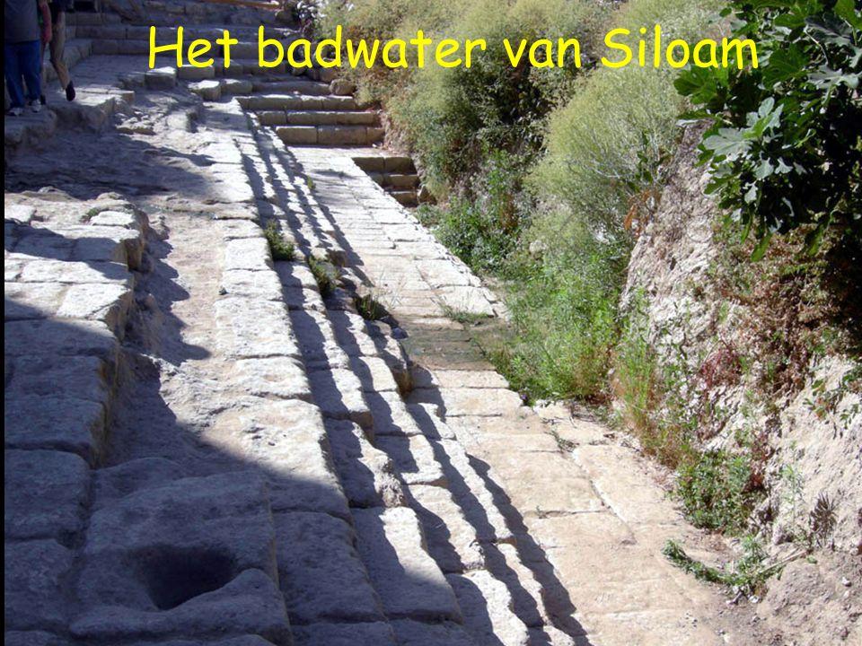 8 Het badwater van Siloam