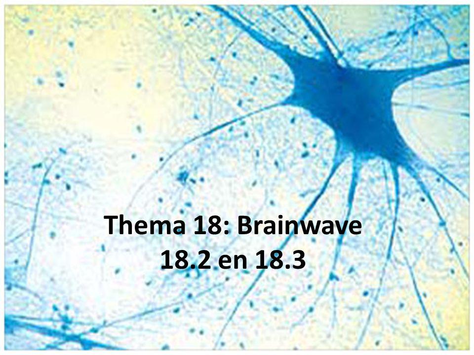Synaps = contactplaats van zenuwcellen, waar impulsen chemisch worden doorgegeven INZOOMEN