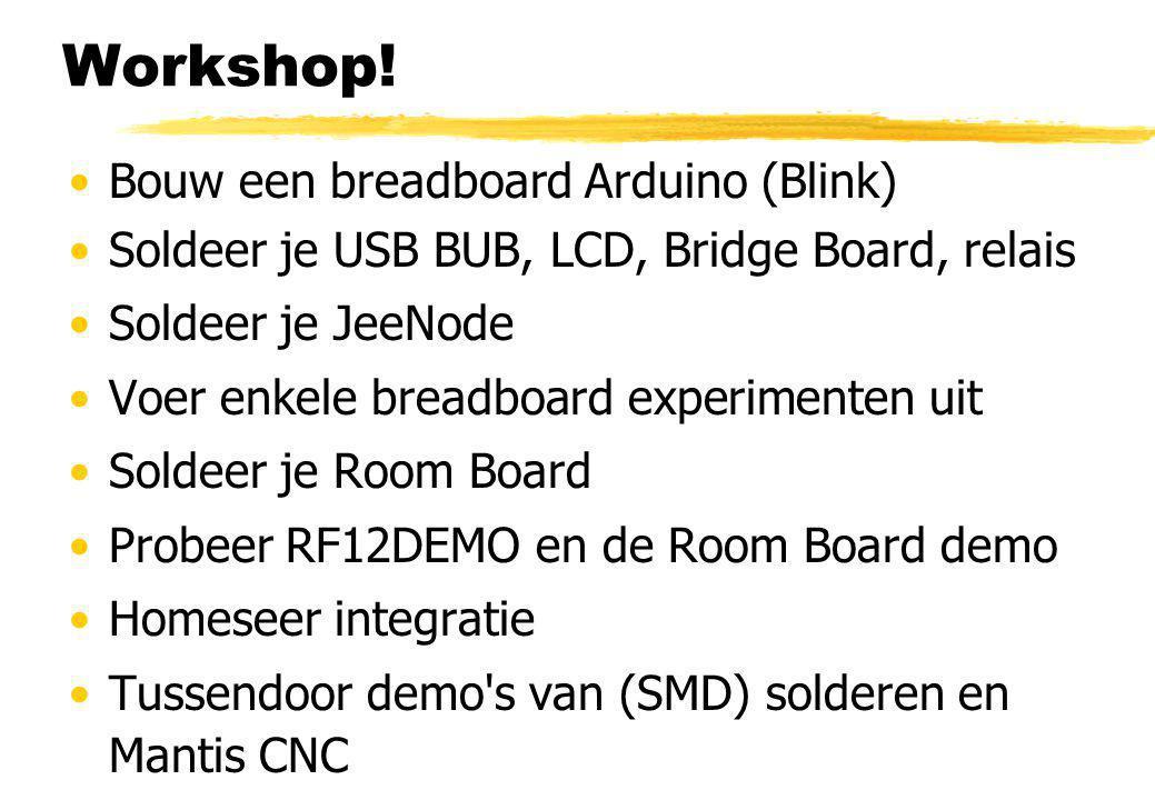 Workshop! Bouw een breadboard Arduino (Blink) Soldeer je USB BUB, LCD, Bridge Board, relais Soldeer je JeeNode Voer enkele breadboard experimenten uit