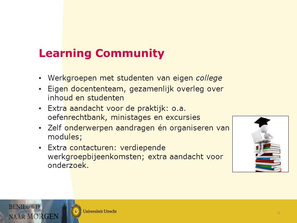 Learning Community Werkgroepen met studenten van eigen college Eigen docententeam, gezamenlijk overleg over inhoud en studenten Extra aandacht voor de praktijk: o.a.
