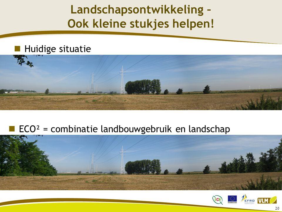 20 Landschapsontwikkeling – Ook kleine stukjes helpen! Huidige situatie ECO² = combinatie landbouwgebruik en landschap