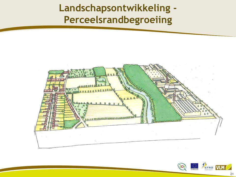 21 Landschapsontwikkeling - Perceelsrandbegroeiing