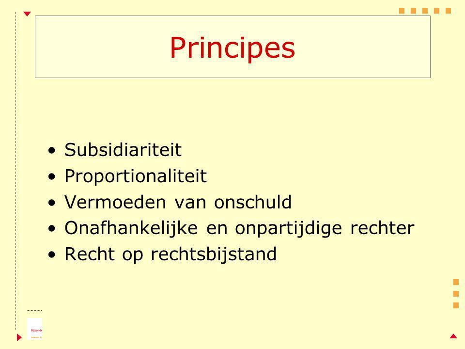 Principes Subsidiariteit Proportionaliteit Vermoeden van onschuld Onafhankelijke en onpartijdige rechter Recht op rechtsbijstand
