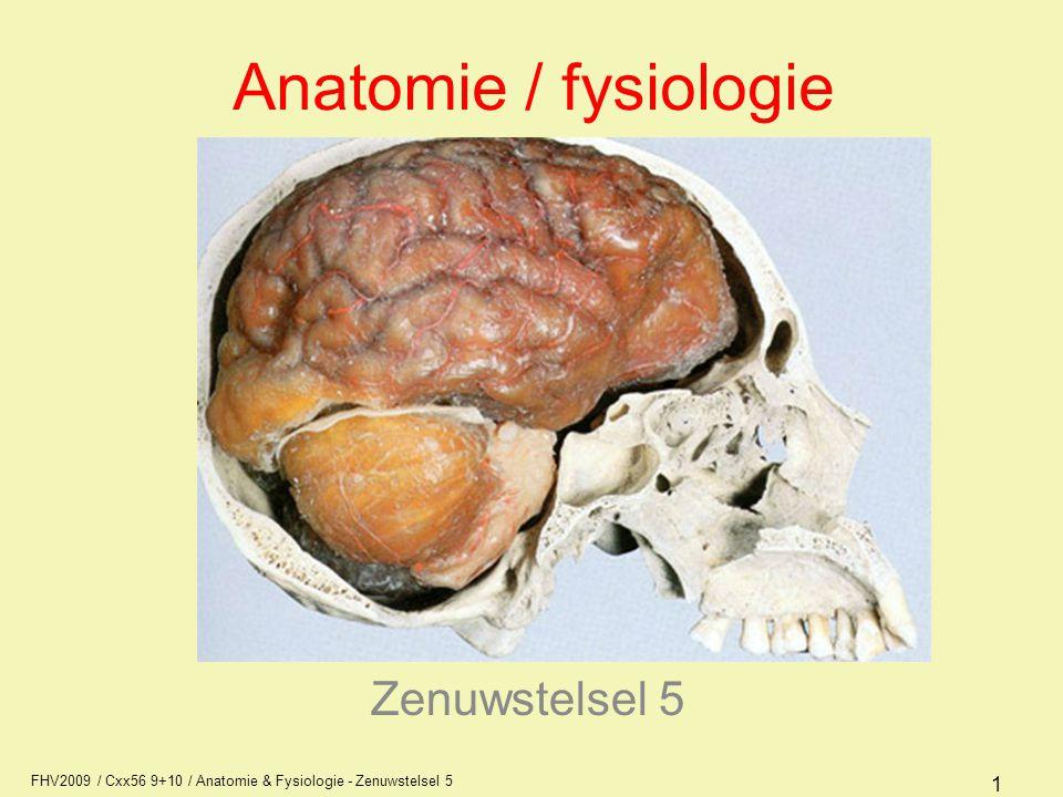 FHV2009 / Cxx56 9+10 / Anatomie & Fysiologie - Zenuwstelsel 5 12 Autonoom zenuwstelsel werking Het sympatische deel van het autonome zenuwstelsel is van belang bij verhoogde fysieke en/of psychische activiteit Het parasympatische deel van het autonome zenuwstelsel speelt een rol bij rust, relaxatie en herstel