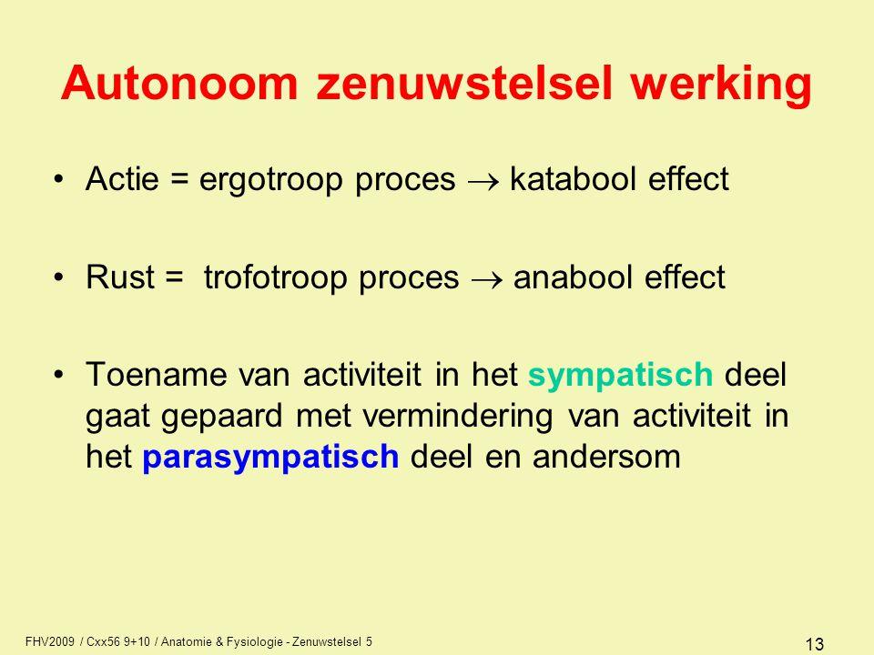 FHV2009 / Cxx56 9+10 / Anatomie & Fysiologie - Zenuwstelsel 5 13 Autonoom zenuwstelsel werking Actie = ergotroop proces  katabool effect Rust = trofo