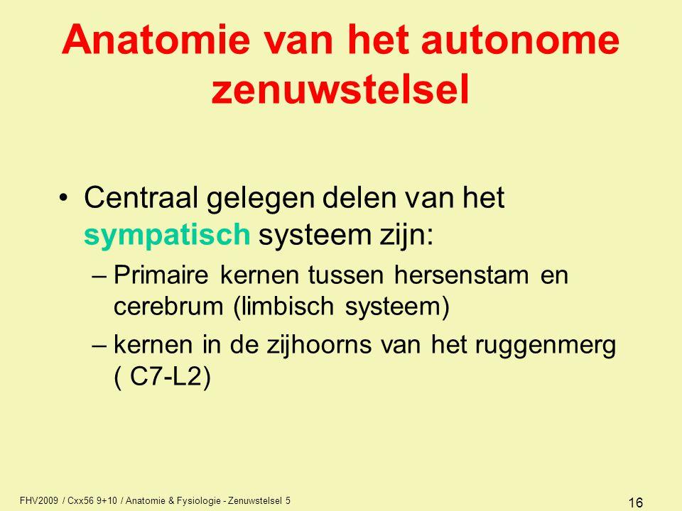 FHV2009 / Cxx56 9+10 / Anatomie & Fysiologie - Zenuwstelsel 5 16 Anatomie van het autonome zenuwstelsel Centraal gelegen delen van het sympatisch syst