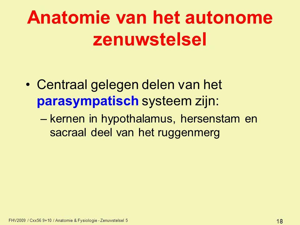 FHV2009 / Cxx56 9+10 / Anatomie & Fysiologie - Zenuwstelsel 5 18 Anatomie van het autonome zenuwstelsel Centraal gelegen delen van het parasympatisch