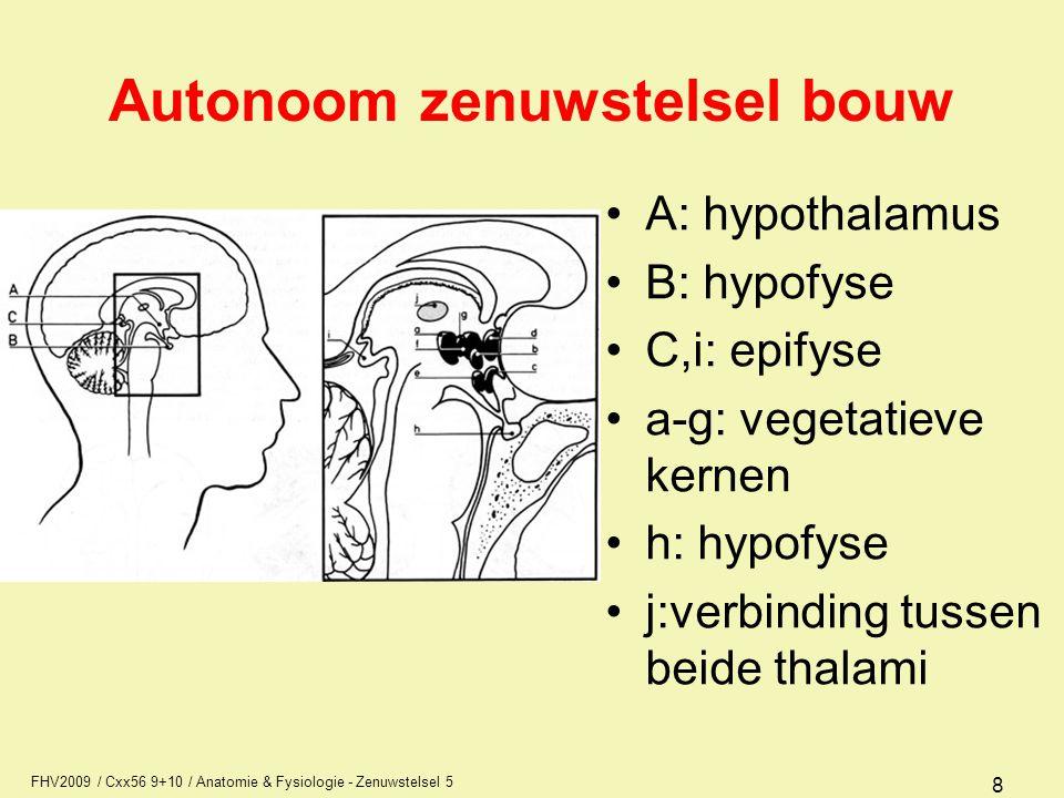 FHV2009 / Cxx56 9+10 / Anatomie & Fysiologie - Zenuwstelsel 5 19 Anatomie van het autonoom zenuwstelsel Perifere delen van het parasympatisch deel –vezels in de 3 e (pupil, accommodatie), 7 e (traan- en speekselklieren),9 e (oorspeekselklier) hersenzenuw,deze vezels hebben een synaps vlak bij het doelorgaan