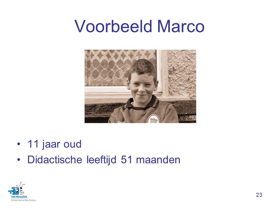 23 Voorbeeld Marco 11 jaar oud Didactische leeftijd 51 maanden